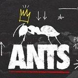 ANTS Preseason - Ushuaïa Ibiza