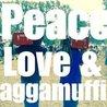 30 Years of Peace, Love & Raggamuffin