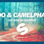 Release: Redondo & CamelPhat – Paths [Spinnin Deep]